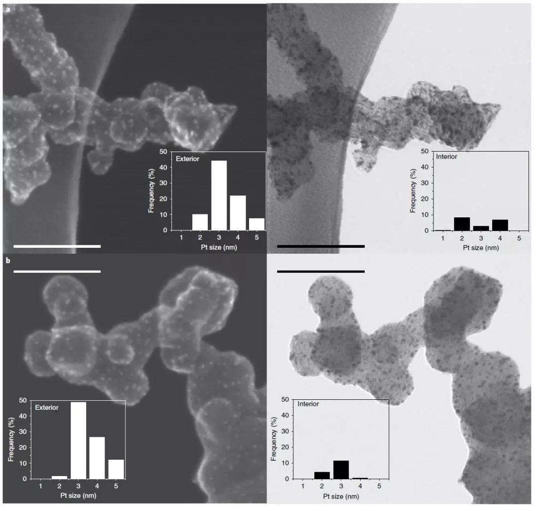 Nature Materials: 离聚物影响燃料电池性能?N掺杂来解决!