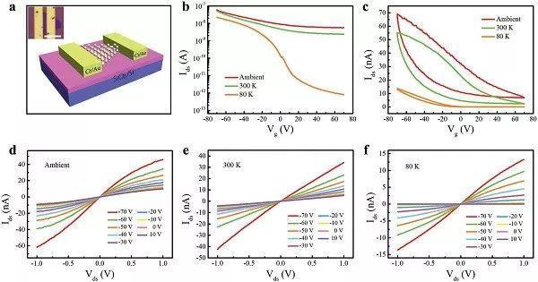 氢辅助单元素二维材料的可控生长及光电应用