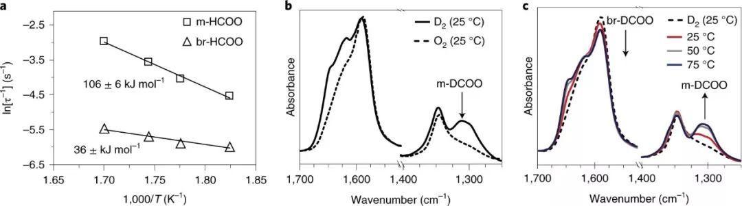 Nature Catalysis:揭秘水煤气变换的催化途径和活性位点