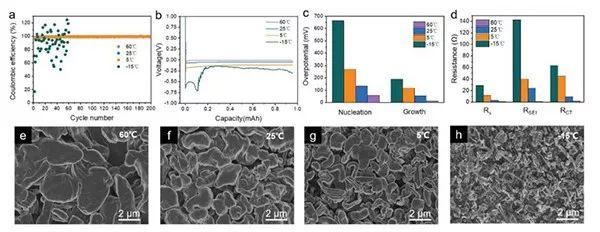 中科大焦淑红AFM: 动力学解释锂枝晶生长的深层次原因