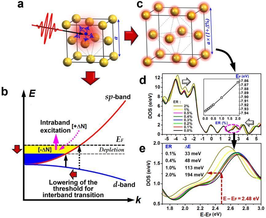 Advanced Science:金属纳米材料中热电子超快动力学研究新进展