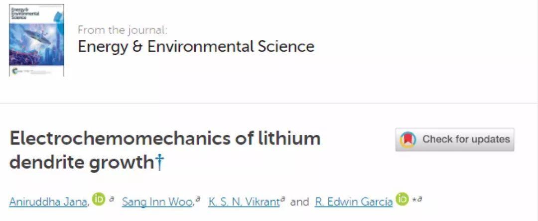 Energy & Environmental Science:锂枝晶生长的电化学机制