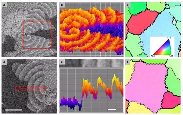Nature Catalysis:原位扫描电镜成像表面催化反应动力学