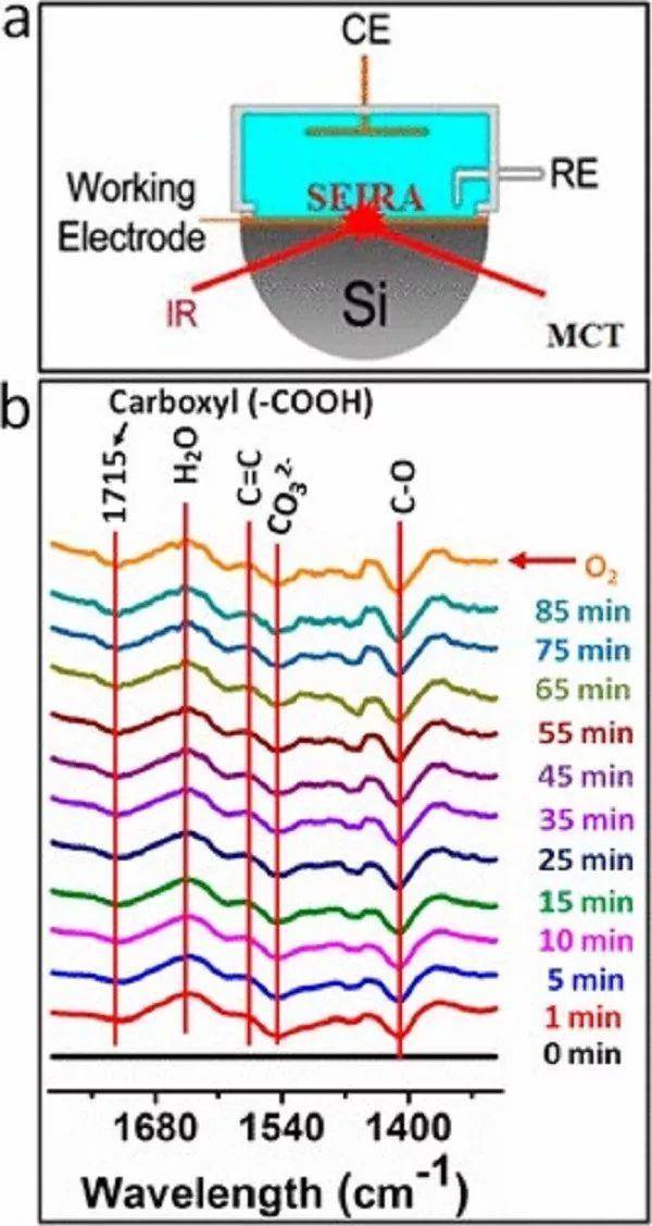 聚焦电催化二氧化碳还原:碳材料上含氧基团的作用