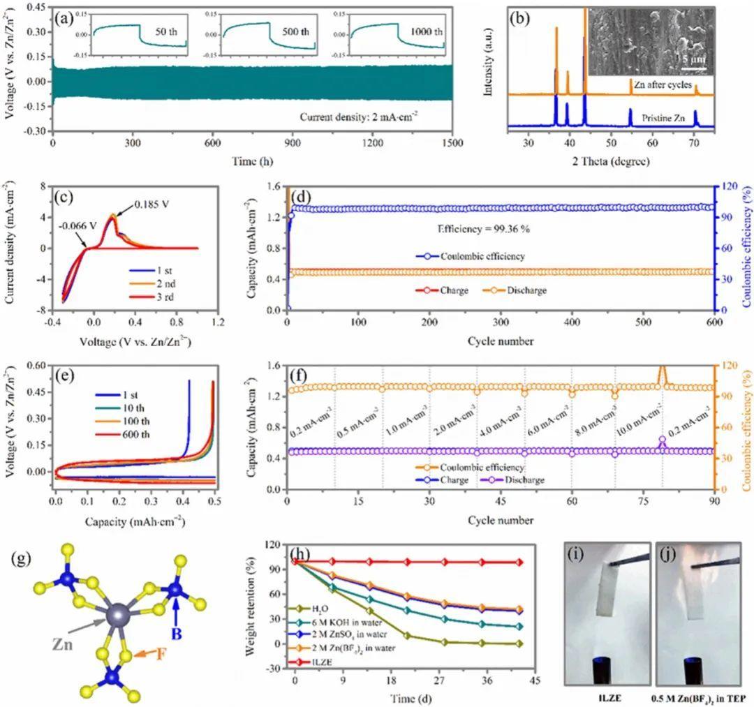 香港城市大学AM:不产氢,无枝晶全固态锌离子电池