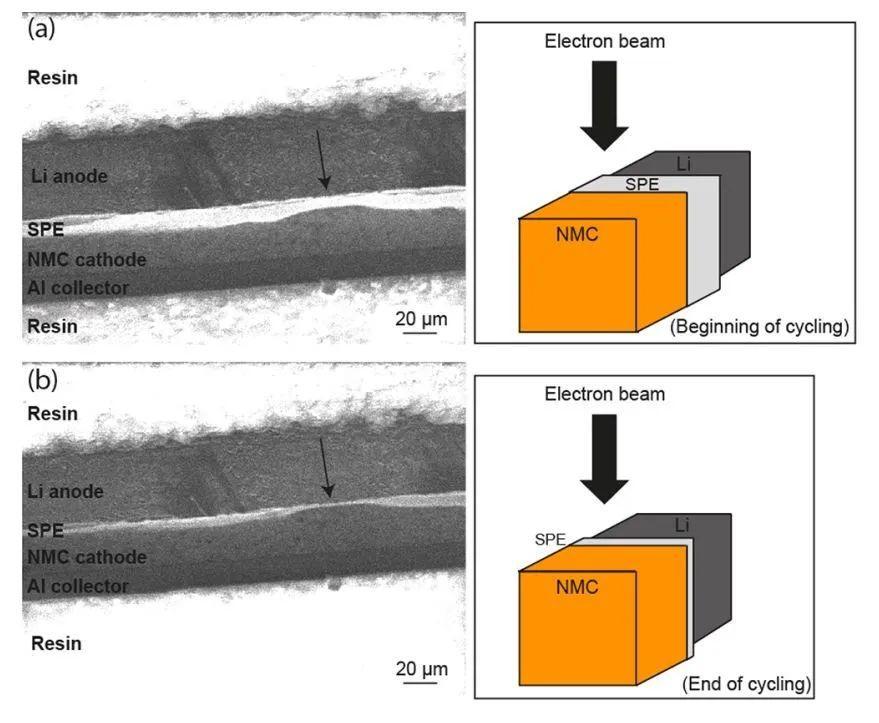 原位技术助力!Goodenough&魁北克水电公司探秘高比能固态电池聚合物电池失效机制
