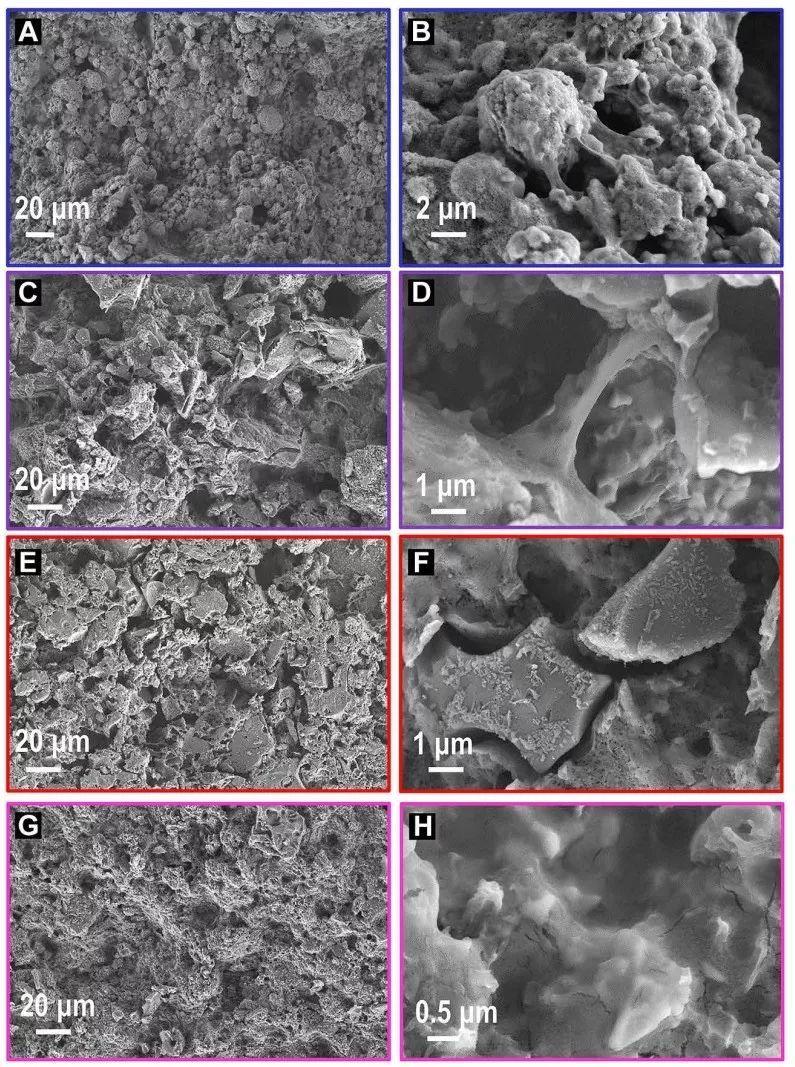 向工业化更进一步:通过优化浆料制备工艺获得抗体积膨胀的锂硫电池高硫载量正极结构