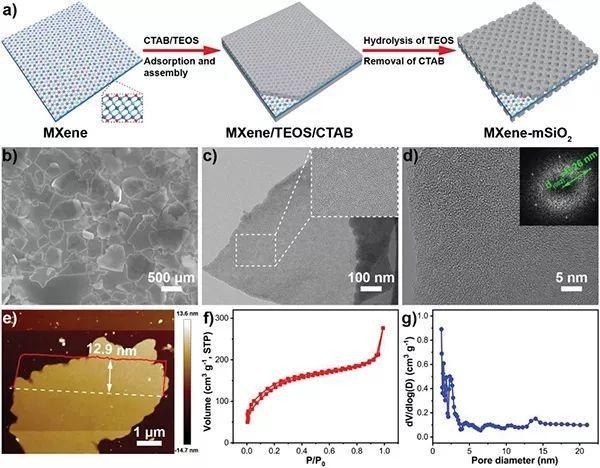 北航杨树斌团队AEM:妙用MXene!实现高性能锂离子导体
