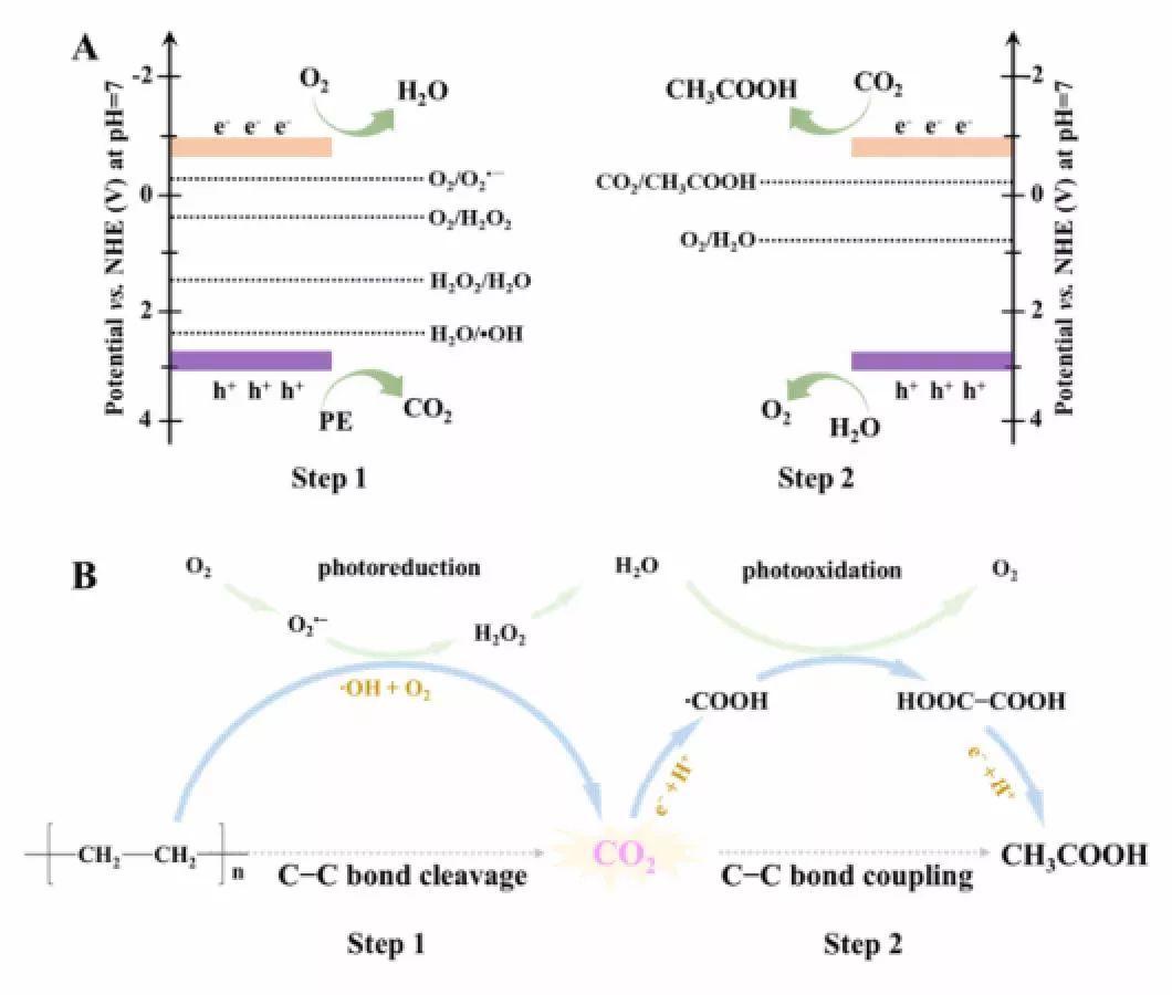 谢毅院士新作:白色污染有救啦!从废塑料到CO2再到C2燃料,全靠光催化