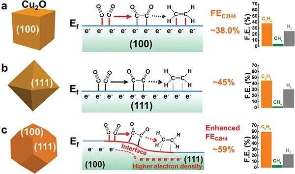 山大晶体材料国家重点实验室Adv. Sci. : 调控Cu2O纳米颗粒高效电催化还原CO2成C2H4