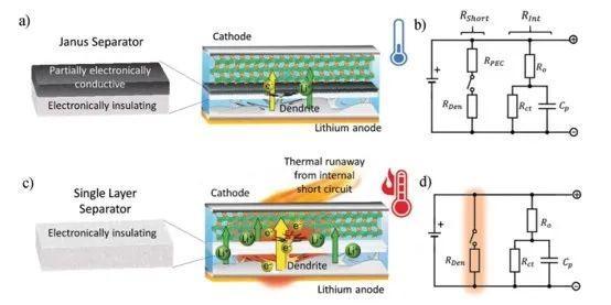 先阻后导:单侧导电隔膜降低电池内短路危害