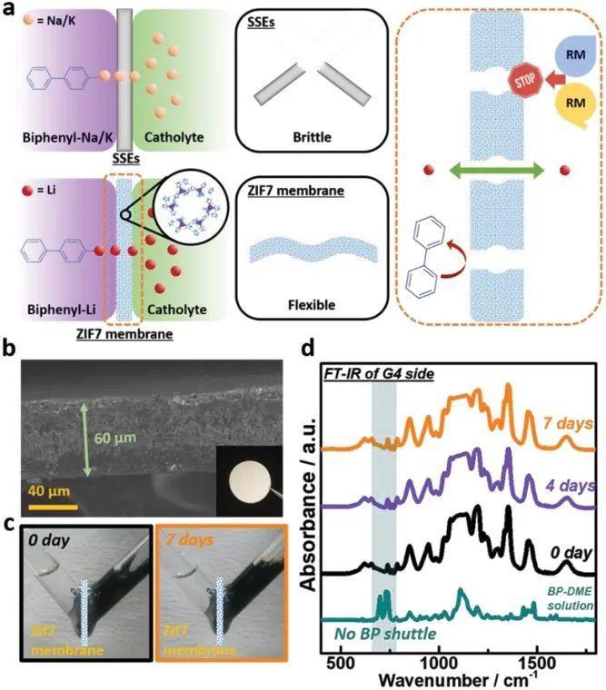 南京大学周豪慎AEM:基于液态锂基负极和MOF隔膜的安全有机氧电池