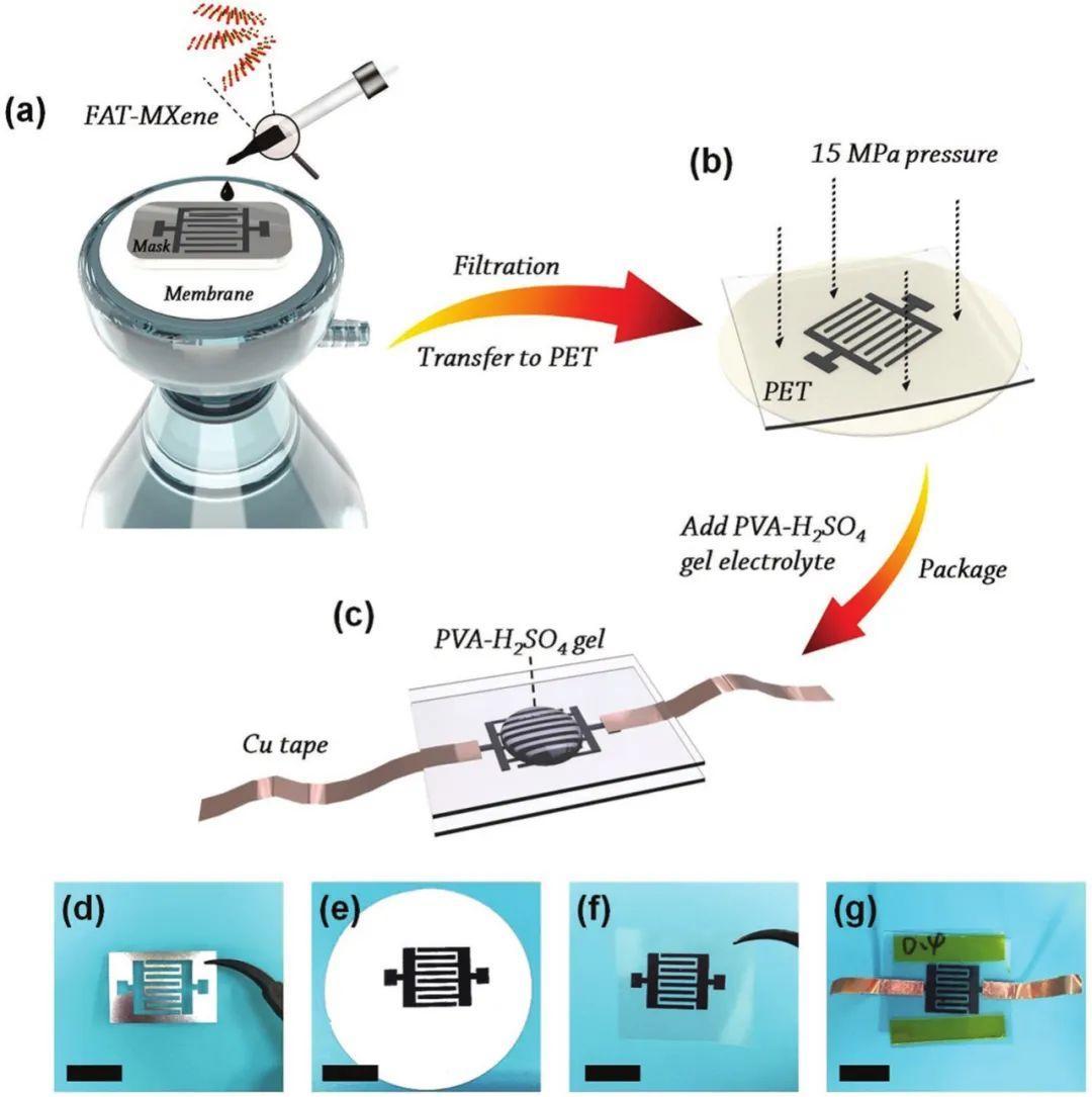 武培怡团队AFM:反复冻融提高MXene产率及其在平面微型超级电容器中的应用