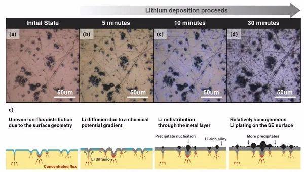 三星&首尔大学:界面如何影响固态电池中的枝晶生长?原位观测告诉你答案!