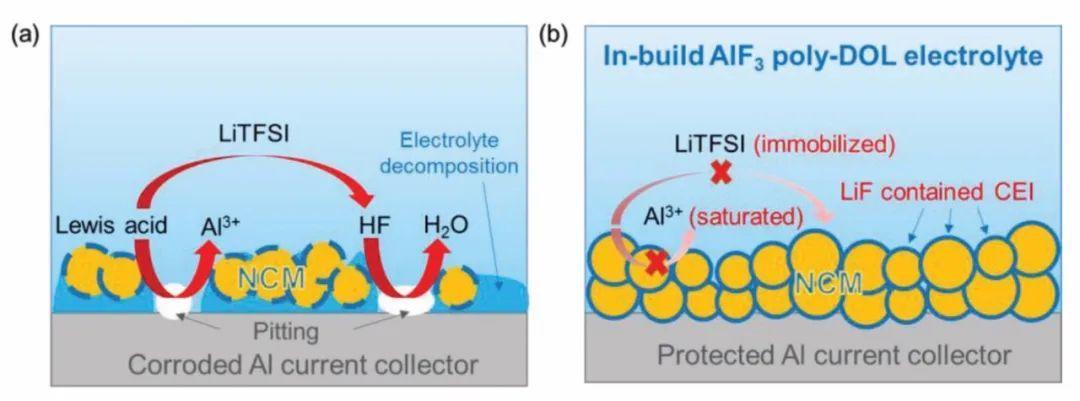 Archer最新AM: 内建聚合物电解质助力基于高镍正极的锂金属电池