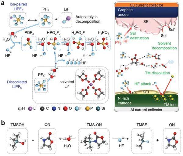 AEM:新型锂电添加剂!环氨基硅烷稳定电极-电解液界面的作用机制