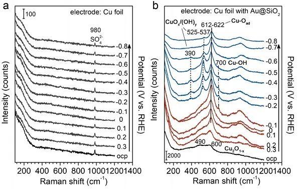 特拉华大学JACS.:电化学CO还原反应过程中Cu表面的形态