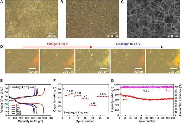 崔屹Science Advances:保持三维集流体中过冷液态硫,用于高性能Li-S电池