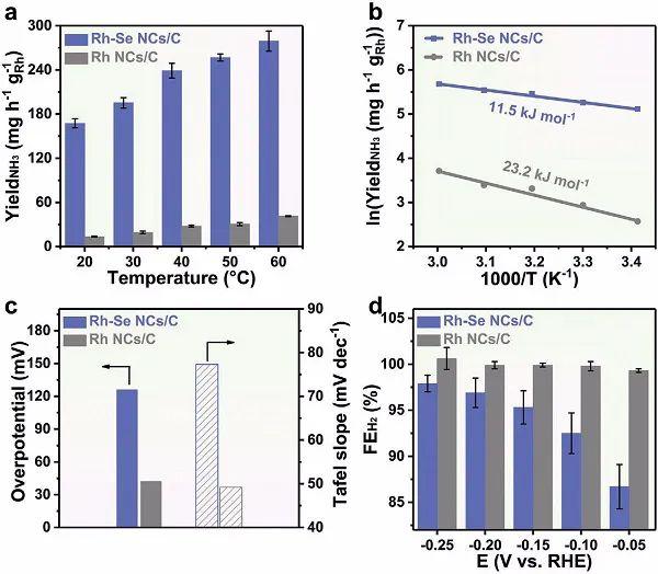 Adv. Mater.:金属纳米晶电化学固氮的通用策略