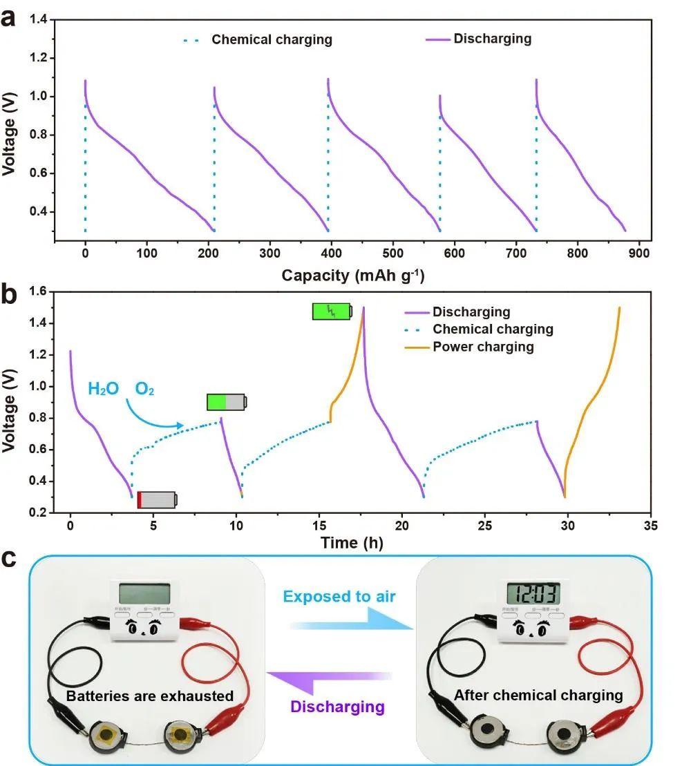 南开大学Nature 子刊:化学自充电水系锌离子电池