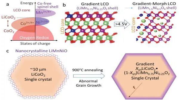 麻省理工李巨教授Energy & Environmental Science:核壳结构实现LiCoO2高电压稳定循环