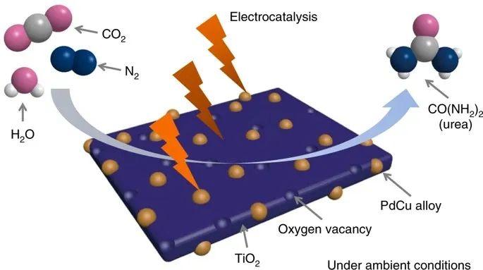 Nature Chemistry:大牛支招,偶联电催化反应,尿素合成有新招!