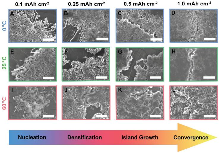 Adv. Mater:同步加速成像技术揭示锂金属负极的化学/物理微观结构对温度依赖