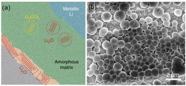中科大AFM综述:锂金属电池电解液的前世今生