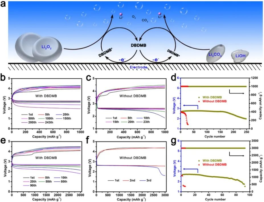中科院长春应化所张新波Angew:三功能可溶性氧化还原介质助力高容量稳定Li-O2电池