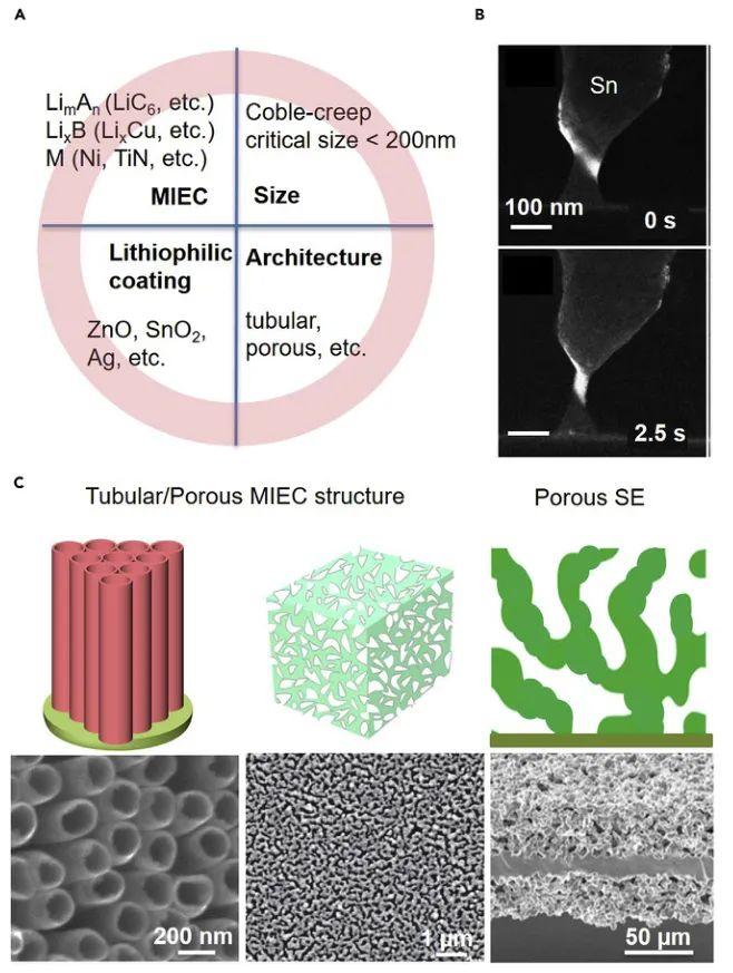 MIT李巨等Chem: 可蠕变3D固态锂金属负极