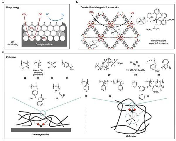 Nature Catalysis综述:电/光催化CO2还原--从分子水平解读局域化学环境效应