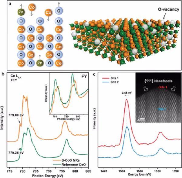 乔世璋&凌涛AM综述:阳离子交换法制备电催化剂