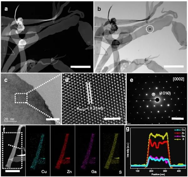 中科大俞书宏院士Nature子刊:单晶纳米带高效光催化产氢