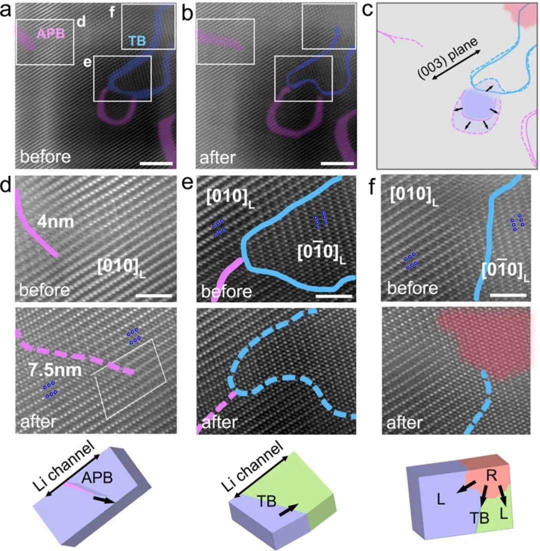 Angew.:原位TEM直接观察富镍层状正极材料中缺陷辅助的结构演变