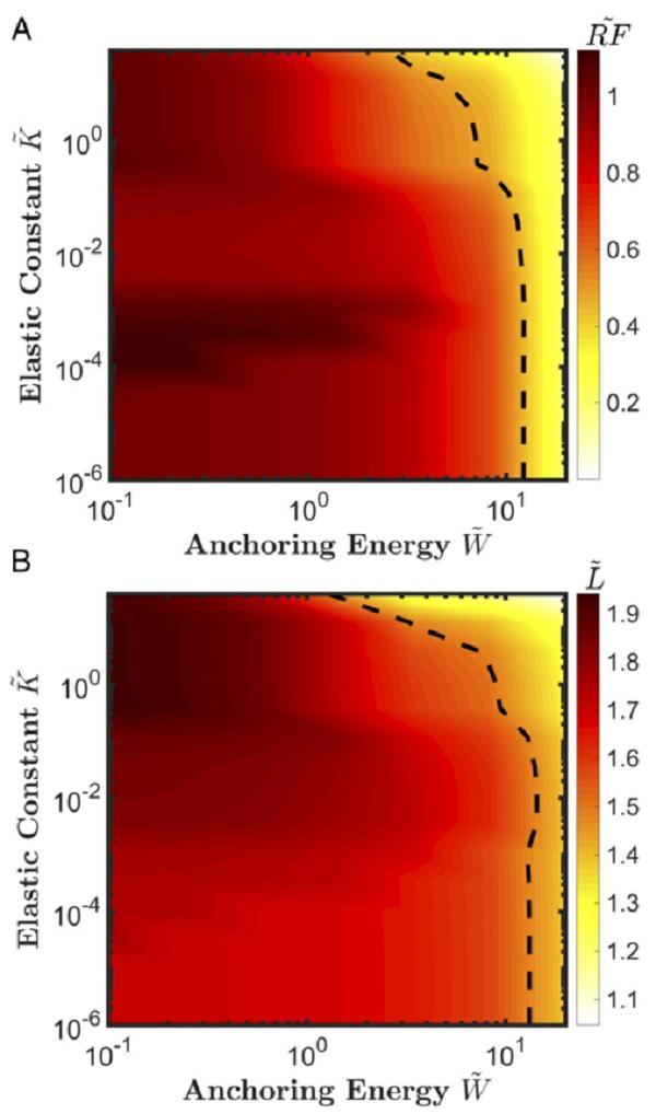 PNAS:液晶电解质实现无枝晶锂负极