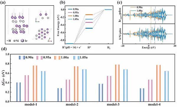 天津大学Adv. Mater.:位错应变纳米结构助力高效HER