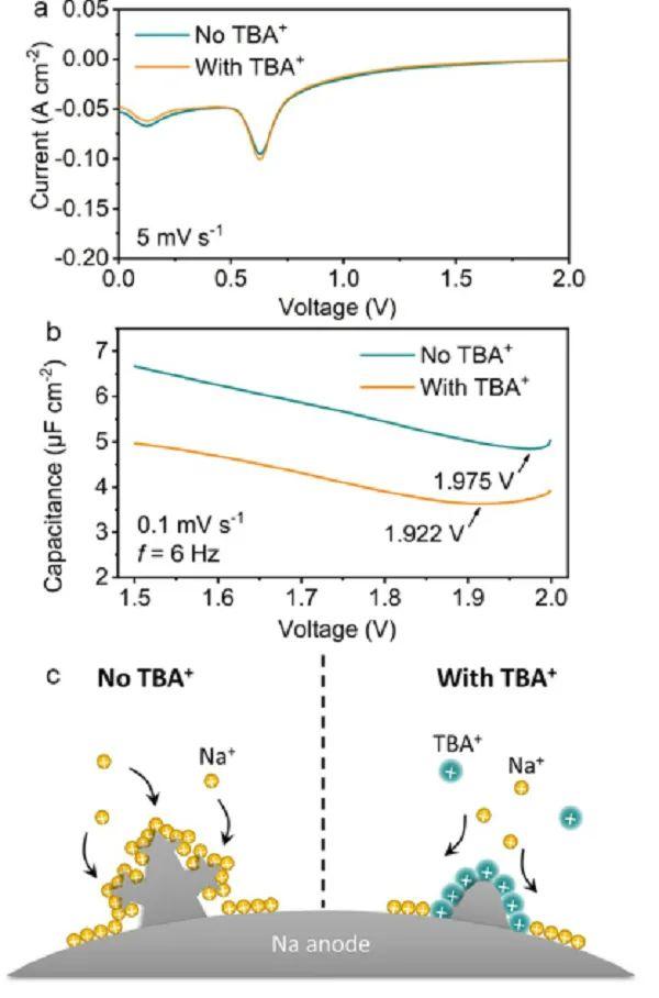 李福军&侴术雷Angew:既抑制枝晶又稳定超氧阴离子的电解质添加剂