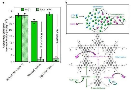 Nature Catalysis: 空间正交的多级孔道酸碱催化剂用于级联反应和拮抗反应