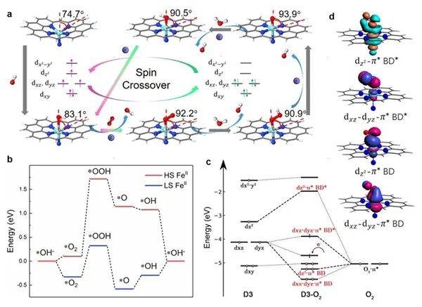 Chem:铁单原子催化中心的电子和结构动力学识别