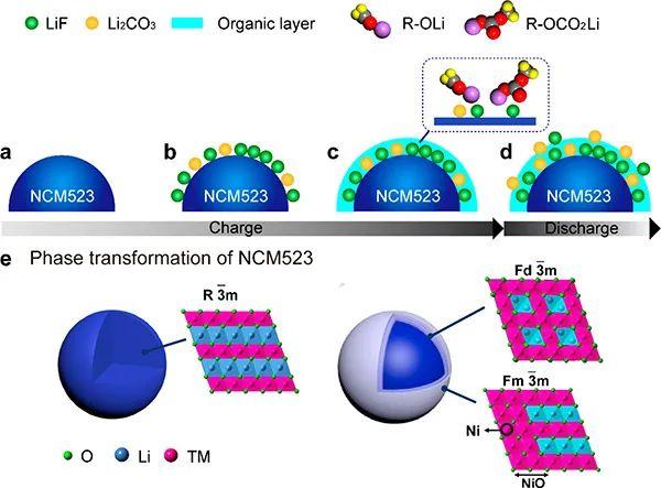 中科院化学所JACS:固态锂电池充放电过程中NCM523表面CEI膜的动态演变