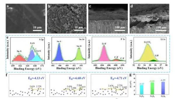 河南大学Angew.:锂金属上原位构筑双相表面层用于长寿命锂硫电池