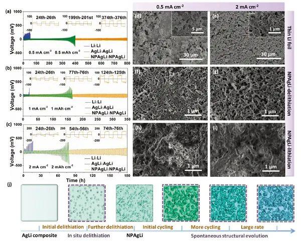 天津理工何广教授AEM:AgLi合金负极预锂化时的结构演变