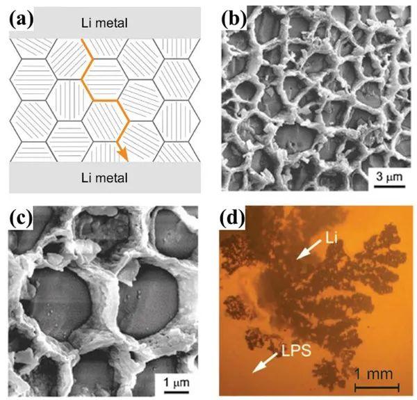 AEM综述:实验室级和实际大容量固态锂金属电池之间的差距