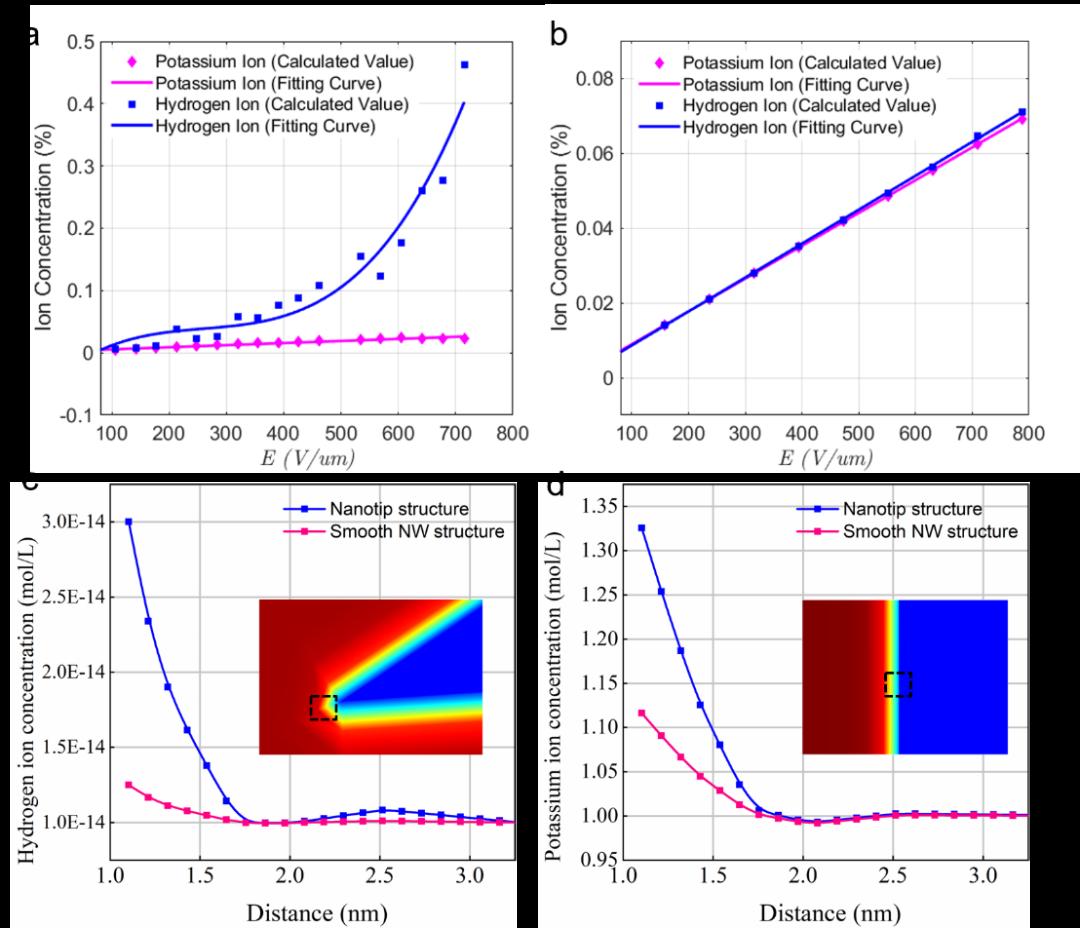 杨诚&邬剑波EES:催化电极表面的氢离子选择性富集