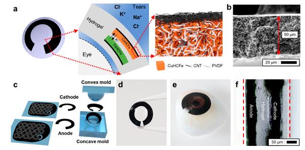Nano Letters:眼泪做电池电解液,这也能行?
