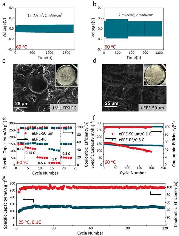 华科谢佳Nano Lett.:纳米相分离的弹性环氧聚合物电解质薄膜提高电池安全性能