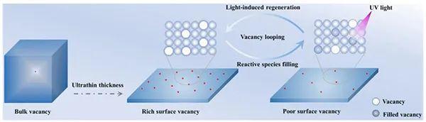 中科大孙永福Angew:Bi2O2CO3纳米片的可再生氧空位提升光催化CO2还原活性和稳定性