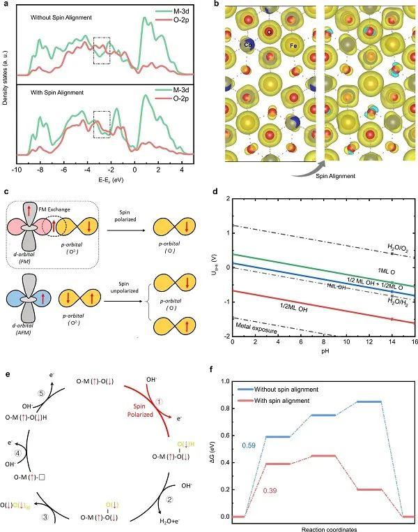 杨海涛/徐梽川Nature子刊:揭示磁场下,自旋极化如何促进OER!