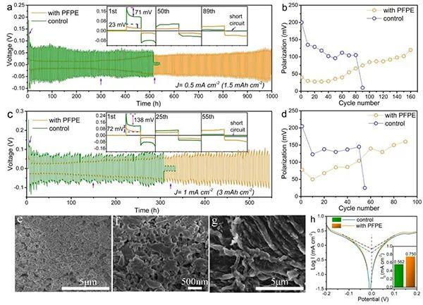 EES:非消耗性流体界面改性剂稳定锂金属负极
