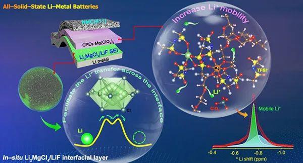 Goodenough等JACS:界面添加剂调控全固态锂金属电池界面接触